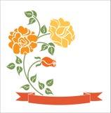 tasiemkowe róże Fotografia Stock