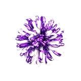 tasiemkowi dekoracyjni kwiaty Zdjęcia Royalty Free