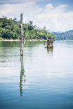 Tasik Banding. Also known as Tasik Temenggor a man-made lake as dam Royalty Free Stock Photography