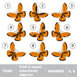 Task and answer. Find two equal identical butterflies . Task and answer. Kid game for children. Find hidden object Stock Photos