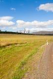 Tasmaanse paddock Royalty-vrije Stock Afbeeldingen