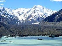 Tasman湖和冰川 库存照片