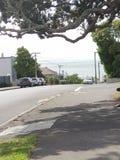 tasman的海运 免版税库存图片