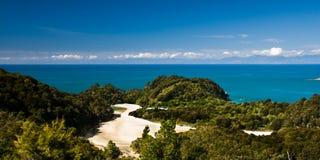 Tasman Abel stock foto's