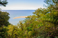 tasman abel nationalpark Royaltyfri Foto