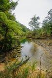 tasman abel nationalpark Fotografering för Bildbyråer