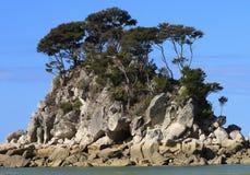 tasman abel nationalpark Royaltyfri Bild