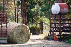 Tasman Bauernhof Lizenzfreies Stockfoto