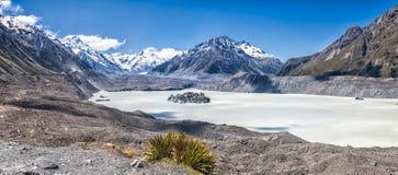 Tasman glaciär royaltyfri foto