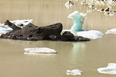 Tasman Glacier Lake icebergs in Aoraki Mt Cook NP royalty free stock photos