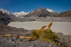 Tasman Lake in Mt. Cook National park, New Zealand. Tasman Lake with glacier in Mt. Cook National park, New Zealand stock images