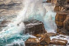 Tasman nationalpark Royaltyfria Bilder