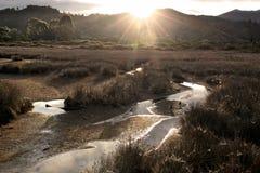 tasman nationalpark för abel aftonmood Royaltyfria Bilder