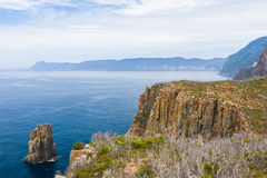 Tasman nationalpark, Tasmania Arkivfoton