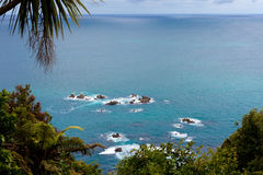 Tasman Sea at West Coast of South Island of NZ Royalty Free Stock Images