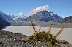 Tasman Valley stock photo