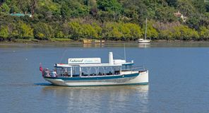 Tamar River in Launceston royalty free stock photo