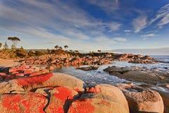 Tasmania Bay of Fires Red Rocks. Australia Tasmania Bay of fires binalong bay red boulders at sunrise ocean coastline warm rising sunlight under blue sky Royalty Free Stock Photography