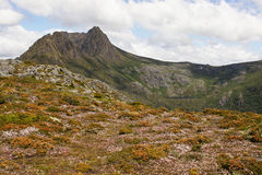 Tasmania, Cradle Mountain NP, Australia. Cradle Mountain Lake St. Clair National Park, Tasmania, Australia Stock Images