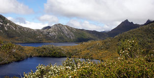 Tasmania, Cradle Mountain NP, Australia. Cradle Mountain Lake St. Clair National Park, Tasmania, Australia Stock Image