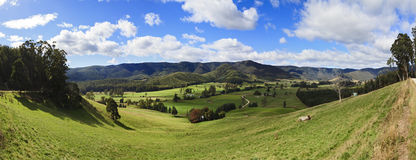 Tasmania Mt VIctoria Valley Panorama Royalty Free Stock Images