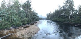 Tasmania rzeka fotografia royalty free