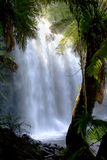 tasmania vattenfall Royaltyfri Bild