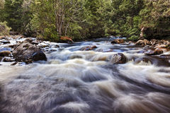 Tasmania Watersmeet River Stock Images