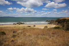 Tasmanian Beach Royalty Free Stock Image
