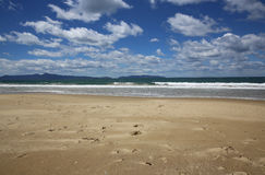 Tasmanian Beach Stock Image