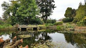 Tasmanian botaniska trädgårdar Arkivbilder