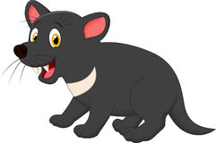 Tasmanian devil cartoon Stock Photos