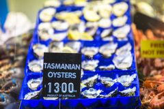 Tasmanian oysters in blue tray sold in Queen Victoria Market, Melbourne, Victoria, Australia. Tasmanian oysters in blue tray sold in Queen Victoria Market royalty free stock photography