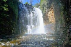 Tasmanien vattenfall Arkivfoto