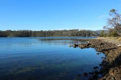 Tasmanisch in der Landuferzone stockbild