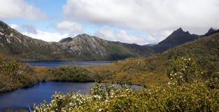 Tasmânia, montanha NP do berço, Austrália Imagem de Stock