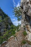 Tasnei峡谷,罗马尼亚 免版税库存图片