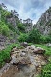 Tasnei Gorge Stock Image