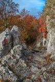 Tasnei-Schlucht, Rumänien Stockbilder