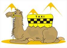 Tassì del cammello Royalty Illustrazione gratis