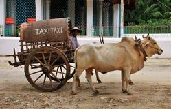 Tassì del local del Myanmar Immagine Stock