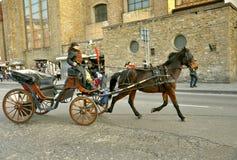 Tassì trainato da cavalli in Italia Immagine Stock Libera da Diritti