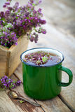 Tasse émaux d'herbes curatives de thym Photo stock