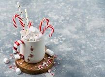 Tasse avec des marshmellows et des cannes de sucrerie Image libre de droits