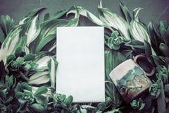 Tasse avec un livre sur le fond des feuilles vertes Photographie stock