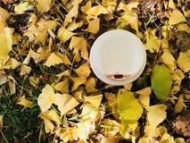 Tasse blanche de café chaud avec la marque rouge de rouge à lèvres et les feuilles jaunes de ginkgo Image stock