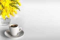 Tasse blanche de café et d'un vase de branches de mimosa sur un fond blanc Images libres de droits
