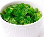 Tasse blanche de feuilles en bon état vertes fraîches sur le fond blanc Images stock