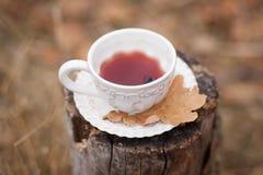 Tasse blanche de vintage avec du vin chaud Photos libres de droits
