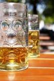 Tasse de bière à moitié pleine dans le jardin de bière Image libre de droits